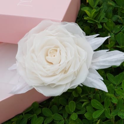 ND60 two-side curly petal Chiffon Rose – New design in Cream